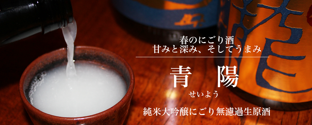 青陽(せいよう)純米大吟醸無濾過生原酒 春限定 にごり酒